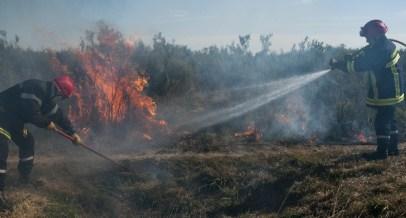 Maîtrise des flammes à partir du pare-feu par les pompiers de la Vienne © Jean-Guy Couteau