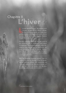 Chapitre II - L'hiver - page 43