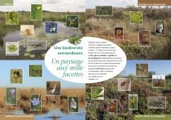 BrochureRNNPinail2018_4-5