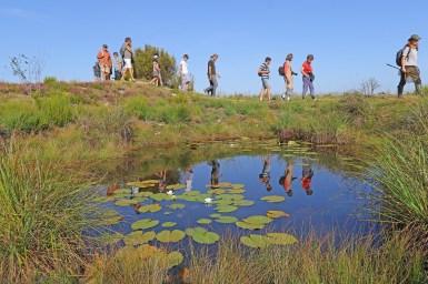 Parcours du sentier de découverte de la Réserve du Pinail. Photo N. Mahu, CAGC