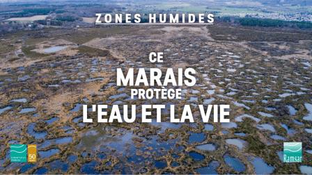 Zone humide Ramsar du Pinail
