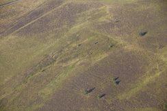 Landes en vue aérienne