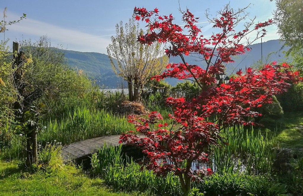 Botanischer Garten Residence Kalterer See