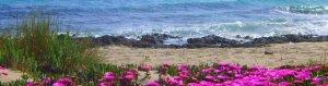 Residence in Puglia ad un passo dal mare