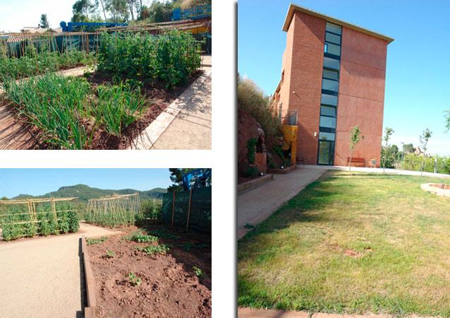 detalle-jardin-huerto-solinatura