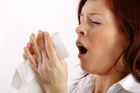 Allergy Proof Your Home!