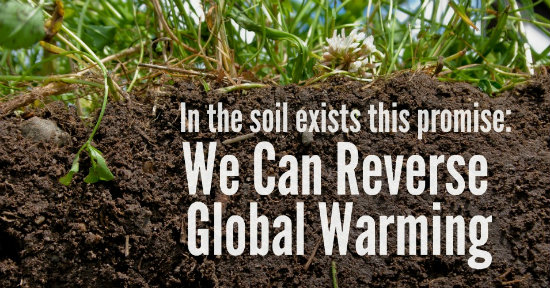 "Soil profile with overlay ""We Can Reverse Global Warming"". From Regeneration International via Common Dreams http://www.commondreams.org/views/2015/12/03/message-paris-we-can-reverse-global-warming"