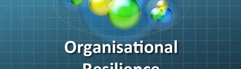 Complexity and Resilience in an Information Centric World