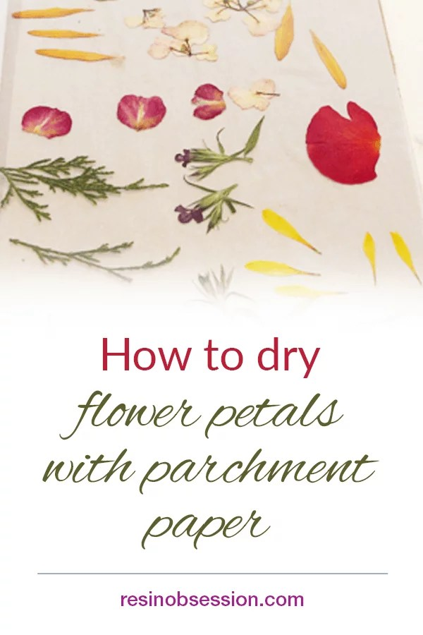 How to dry flower petals with parchment paper