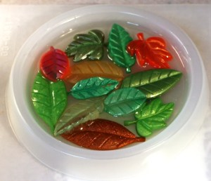 leaves in a resin casting