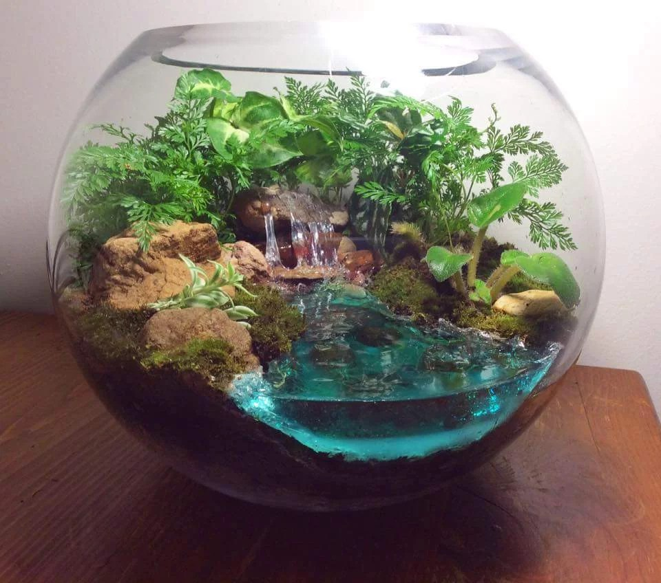 How To Make Water For A Terrarium Resin Obsession