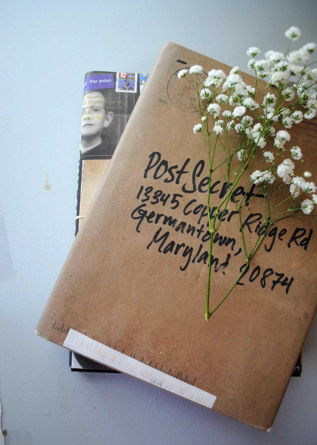 baby's breath on top of a postal package