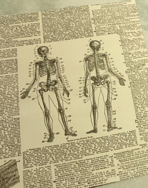 skeleton Halloween paper