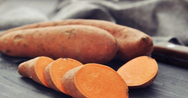 Ipomea batatas, Patata dolce