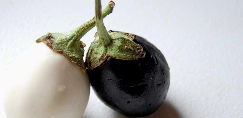 Piante da frutto nane: mini melanzane da coltivare in vaso