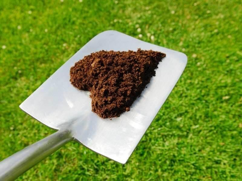 Concime organico: quando, come e quanto concimare