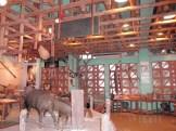 2階 展示室①