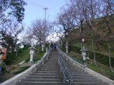 名護城公園の南口付近④