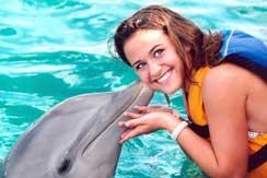 Tour Dolphin Swim