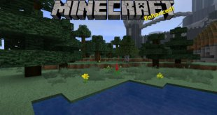 Minecraft Enhanced Resource Texture Pack
