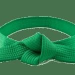 LeanSigma Green Belt Training