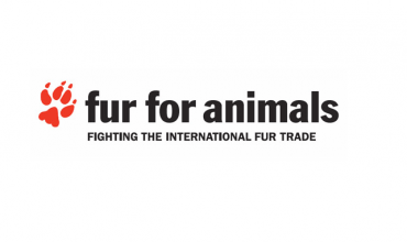 Fur for Animals competition proves a huge success