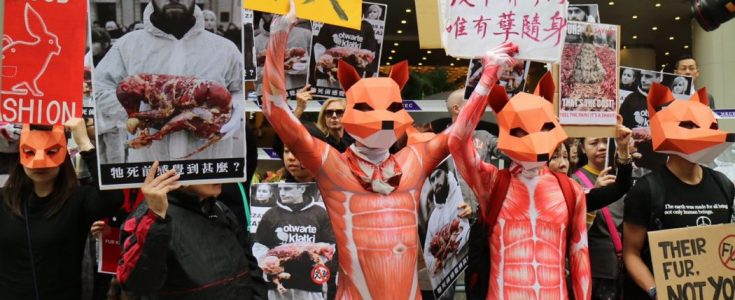 Hong Kong's fur fair is shocking. But these brilliant activists are taking them on.