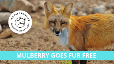 Mulberry becomes a Fur Free Retailer