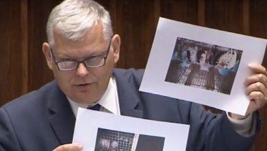 Poland close to historic fur farming ban