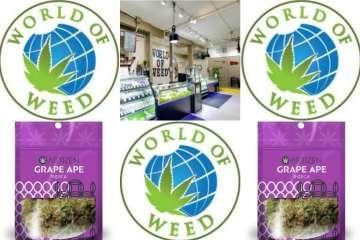 World of weed is Washington's Top pot shop