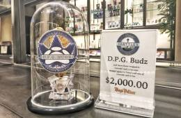 Luxury Cannabis Welcomes The World's First $2000 Meteorite to Diego Pellicer