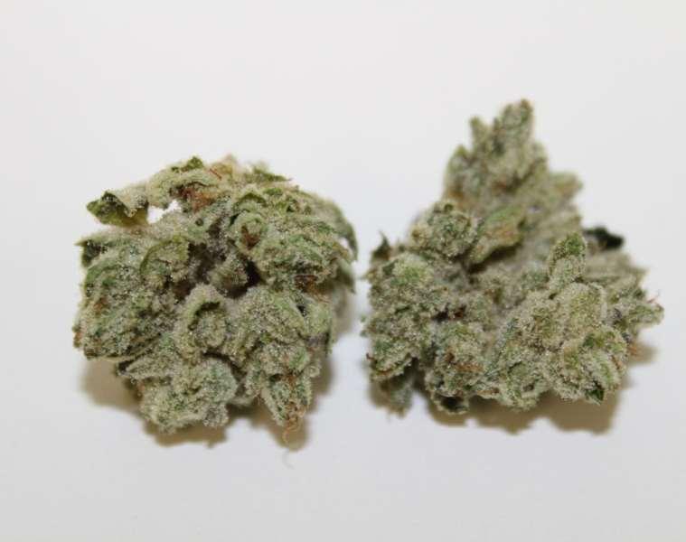 Gorilla Glue Weed Strain