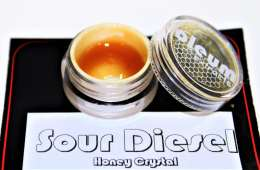 Testing Oleum's Sour Diesel Honey Crystal   Cannabis Review