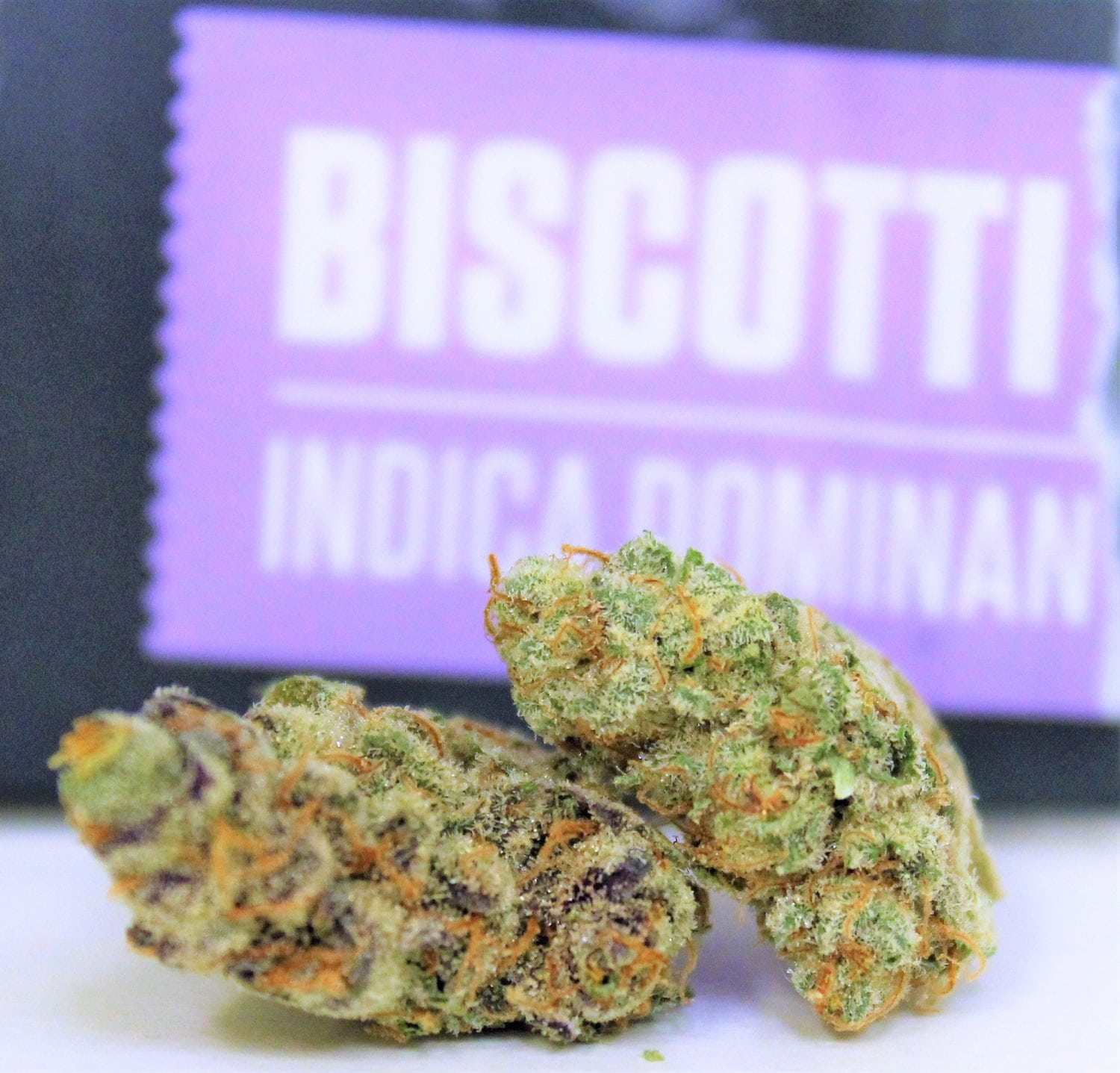 Why Is The Biscotti Strain So Dank The Genetics Are Very Powerful