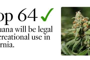 Learn More About The California Recreational Marijuana Market