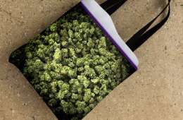 What's In Your Stoner Bag? - Joint Parenting
