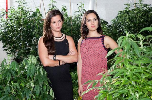 Cannabis x SXSW: Vote For This Panel On Women, Weed, And Tech!
