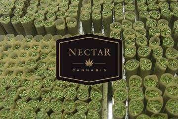 Nectar Portland, Visit Nectar For All Your Cannabis Needs
