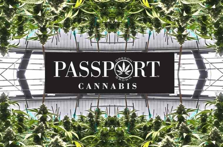 9/7: Passport Cannabis Hosts RMR's West Coast Weed Tour At Vitalidad