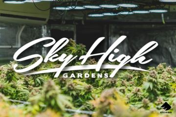 Sky High Gardens Teaches RMR How To Burp Cannabis And Press Rosin