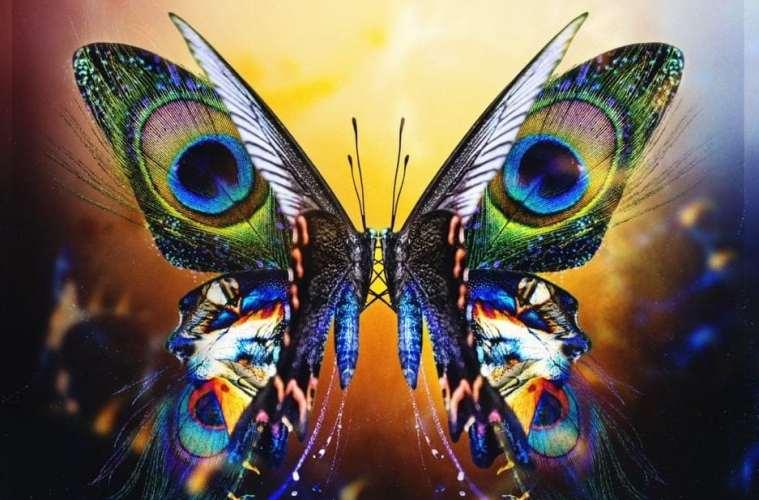 Tritonal Announce New Album 'U & ME' and US Tour, Drop Lead Single