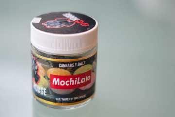 Mochilato