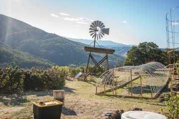 WildLand Farm Is One of Mendocino's Best Farms