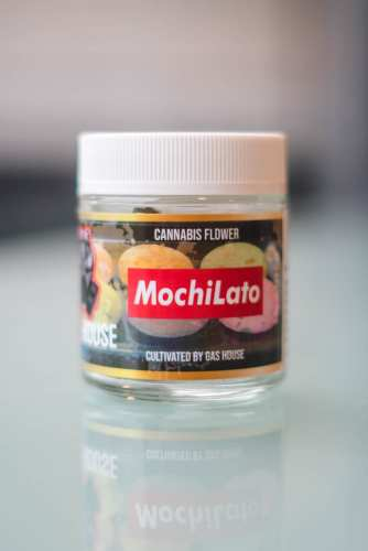 Mochiato Cannabis Strain Review (Prod. Gas House)