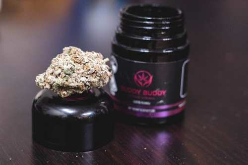 Purple Punch Strain Review (Feat. Buddy Buddy Indoor)