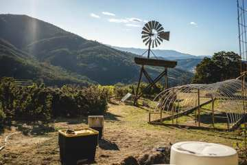 Learn More About Mendocino Generations And Their Cannabis Network