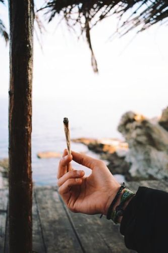 How To Guide For Cannabis And International Travel