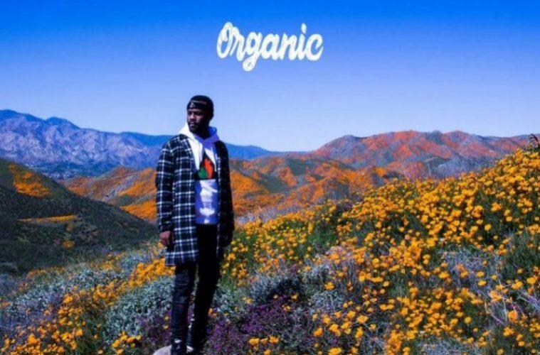 """new album """"organic"""""""