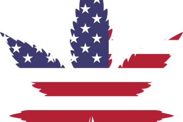 Illinois Just Legalized Cannabis WithoIllinois Just Legalized Cannabis Without A Public Voteut A Public Vote