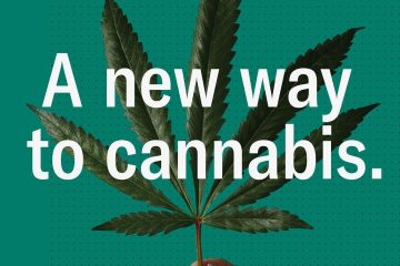 Leafly Creates New Visual Language With Re-Branded Cannabis Guide